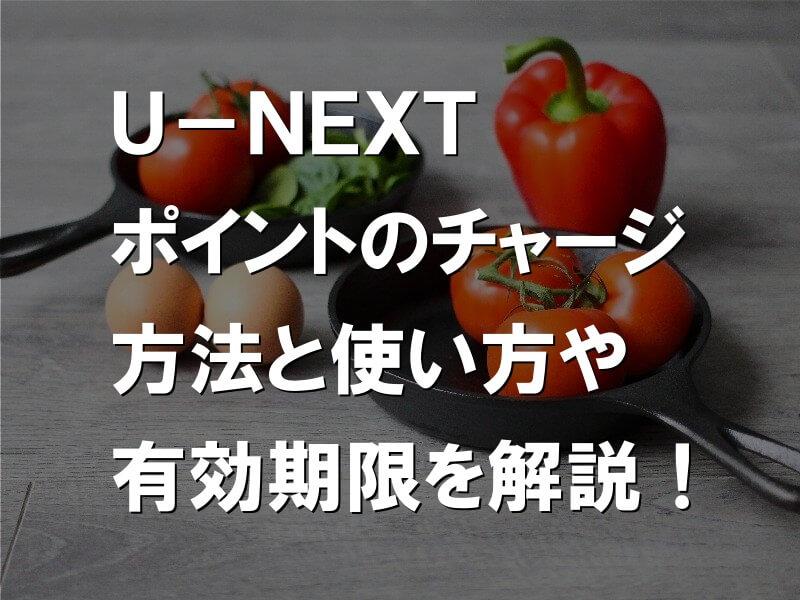 U-NEXTポイントのチャージ方法と損しない使い方や有効期限を解説!