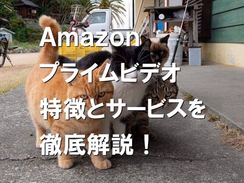 Amazonプライムビデオ 特徴とサービスを徹底解説!