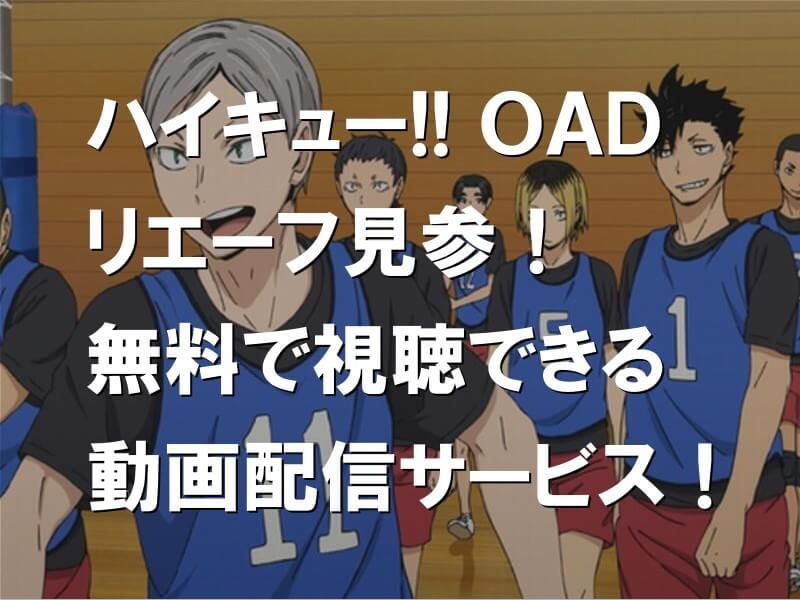 ハイキュー!! リエーフ見参! OAD 無料で視聴できる動画配信サービス!