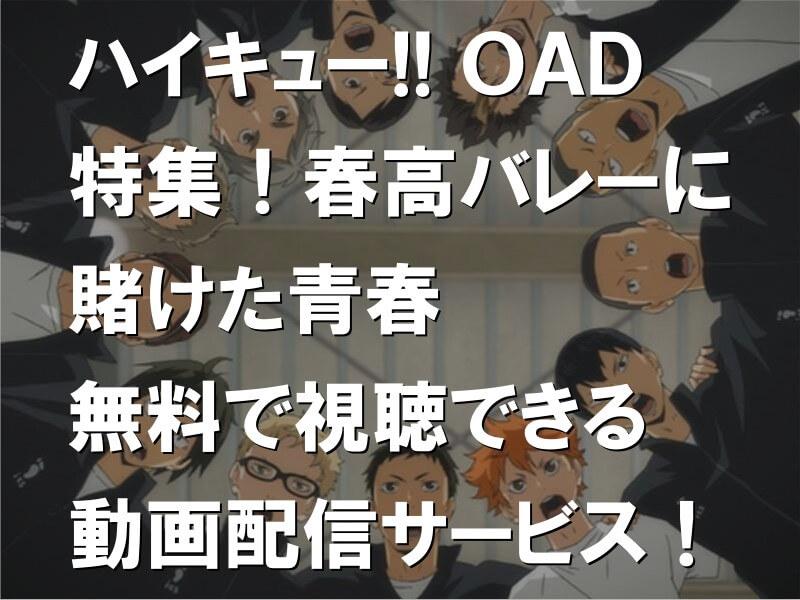 ハイキュー!! 特集!春高バレーに賭けた青春 OAD 無料で視聴できる動画配信サービス!